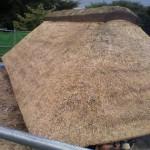 箱棟をてっぺんに施工し土を入れユリ根を埋める 遠野ならでは