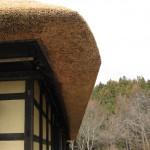 かやの厚みは約40㎝ 屋根の重さは2トン